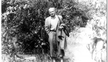 Buji Ferenc: A Hamvas divat