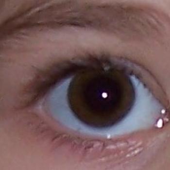 Gyermek, a szülő szeme fénye