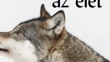 Hét nap az élet - A farkas (részletek)